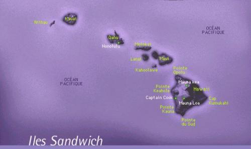 sandwich 3.jpg