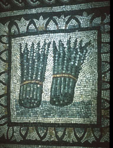asperges-dans-mosaique-romaine.jpg