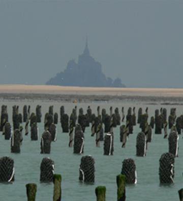 Moules Mt-St-Michel.jpg