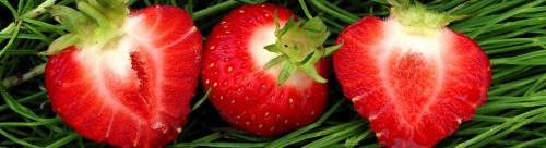 fraise 2.jpg