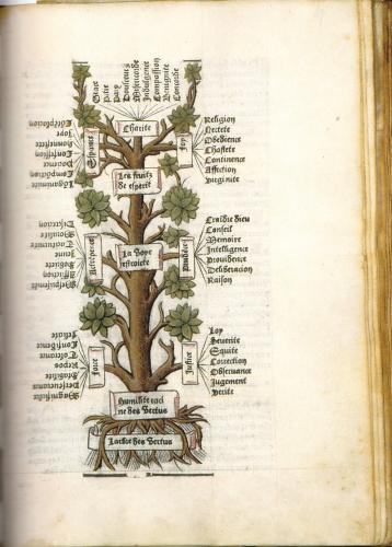 arbre vertus 2.jpg