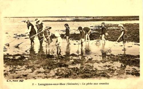 Langru186.jpg